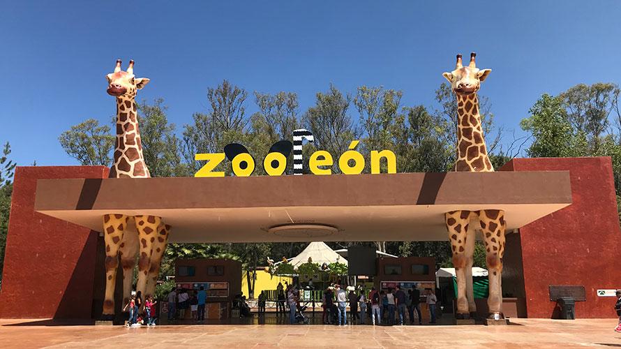 Zoo Leon