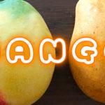 メキシコで一生分のマンゴーを食べつくす