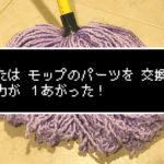 モップ糸がパーツ交換できるとか知らなかった…(´・ω・`)