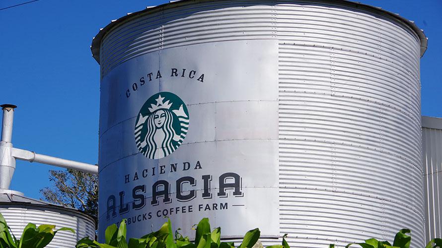 Hacienda Alsacia