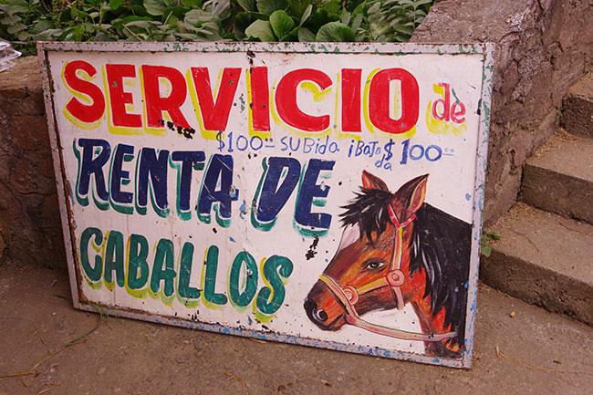 馬レンタルサービス